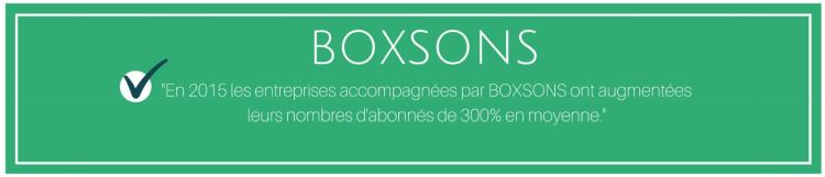 linkedin viadeo boxsons alexis lemonnier